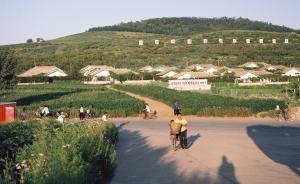 中国专家赴朝介绍水稻种植水产养殖,交流会现场讨论热烈