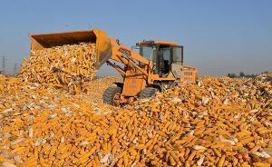 农业部副部长:不必再追求粮食数量连年增长,要巩固提升产能