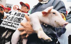 """台湾""""大选""""政见会最终场落幕:美猪开放议题成为激辩焦点"""