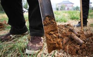 洛阳铲就这样从盗墓工具变成了考古利器
