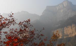环保部督查河南新乡:两项大气污染指标增幅居全省第一