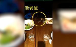 饭吃一半活老鼠掉进餐盘,涉事上海西餐厅Wagas停业整顿