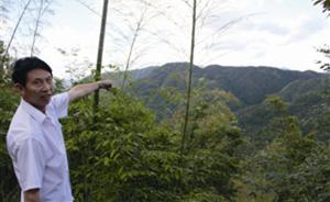 7600元承包千亩林地40年,村民诉合同无效两度发回重审