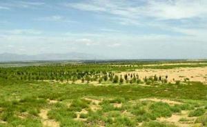 内蒙古荒漠化、沙化土地面积连续十年减少,局部恶化趋势仍在