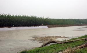 防大汛⑩ 专家:长江绝不能再搞严防死守,中游需与洪水共处