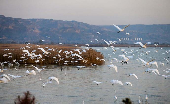 中科院|陸大道:關于黃河流域高質量發展的認識與建議