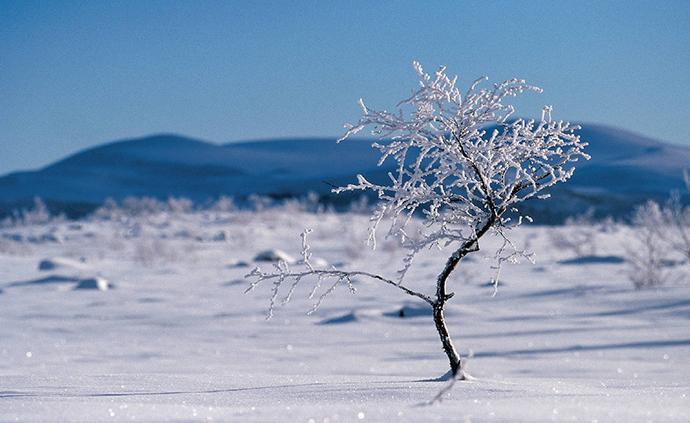 周末北方雨雪增多,南方異常溫暖或創紀錄