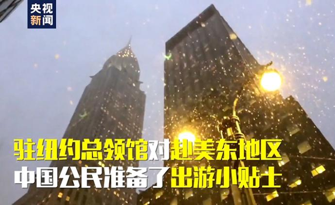 驻纽约总领馆发布2020年春节中国公民赴美安全贴士