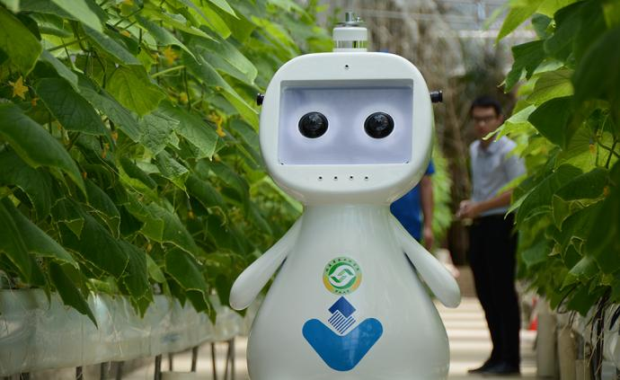 两部门:加快农业人工智能研发应用,实施农业机器人发展战略