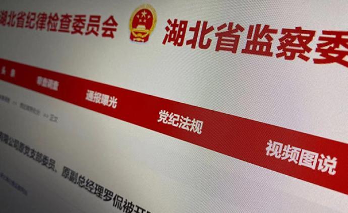 湖北联投矿业原副总经理罗侃被开除党籍:违规裁撤班子成员