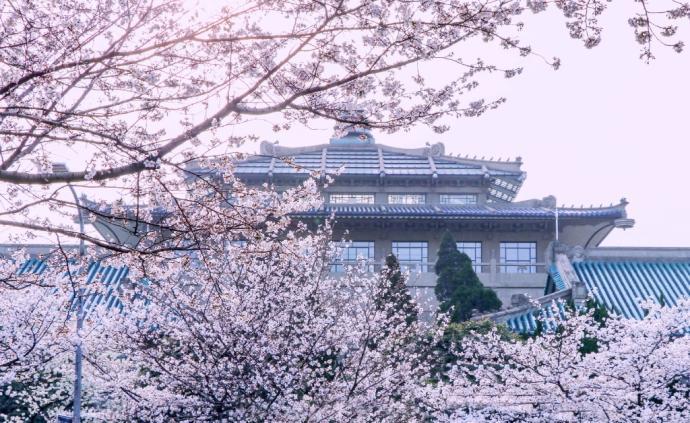 武漢戰紀|春天不遠
