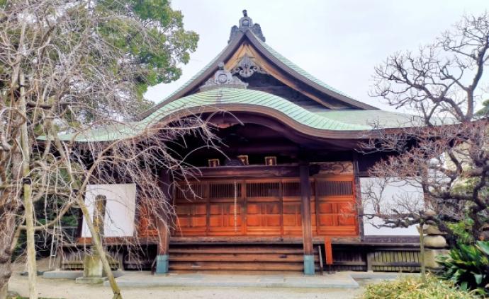 今年在日本神社许下的心愿比任何时候都要迫切