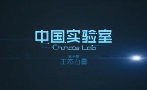 澎湃新闻原创纪录片《中国实验室》第三集:生态力量