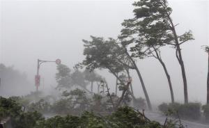 """台风""""莫兰蒂""""深夜登陆重创厦门电网,致全市大面积停电"""