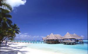 我国对国际旅游贡献超一成,马尔代夫新增入境客半数是中国人