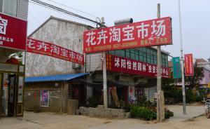 淘宝上卖花木的五分之一在沭阳,这个苏北县城凭什么?