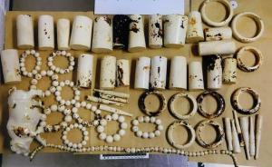 陕西男子从南非回国走私52件象牙制品,获刑四年罚金四万