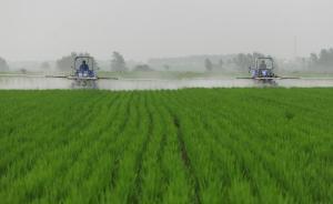 人民日报:农村青壮年劳力流失,需要加快培育新型职业农民