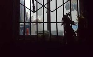 警方:陕西延长持刀杀人案经初步查明系因土地补偿纠纷