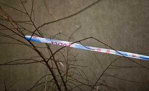河北霸州东段乡纪委书记在家中持刀杀死妻儿,随后跳楼自杀