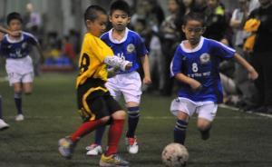 中国足球如何复制冰岛的成功?谁那么傻,不建房子建球场?