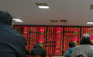 杨德龙:A股可能成为今年最大惊喜