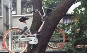 央媒刊文评破坏共享单车:公民素养和公德教育上还有薄弱环节