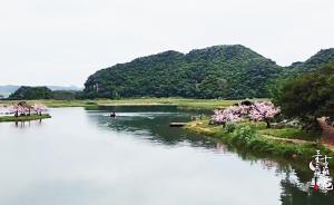 《三生三世十里桃花》里的青丘到底在四海八荒的哪里