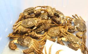 水产新品科技成果转化全国首单:大闸蟹良种178万元转让