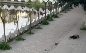 四川泸县官方:初二学生死亡无他杀证据,多人传谣将受罚