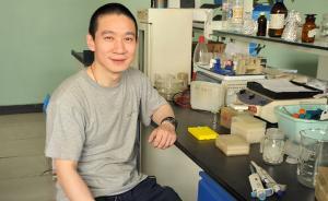 多国科学家:韩春雨基因编辑实验无法重复,要求公开所有数据