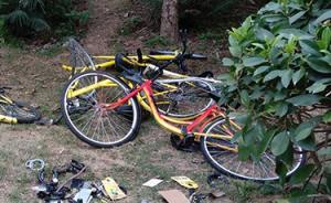 海南海口:故意损坏共享单车等行为将纳入个人信用记录