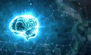 这个心智、脑科学、教育的跨学科平台成立,院士说盼了二十年