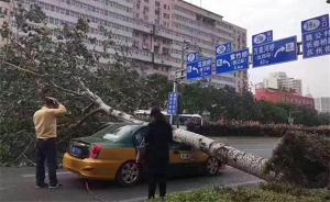 北京下午风力更猛局地可达10级,傍晚起减弱