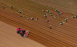 中国今年底前将发布农用地、建设用地土壤环境质量标准