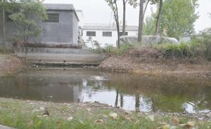 枣庄高三女生救起落水女孩后溺亡:自己不会游泳,正备战高考