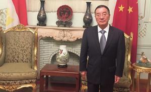 专访丨中国驻埃及大使:埃及开放步伐值得中企关注