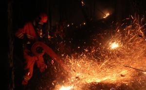 内蒙古大兴安岭毕拉河特大失火案涉事林场主任被立案侦查