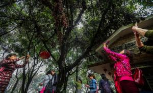 2016中国环境状况公报:74城PM2.5浓度降9.1%