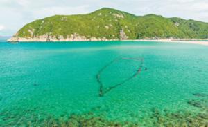 海南大洲岛:无人居住供濒危金丝燕栖息,人工繁育望恢复种群