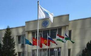 印巴加入上合组织有望提升跨区域反恐能力,两国矛盾或难化解