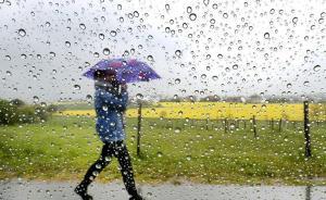 申城迎入汛以来第一场大到暴雨,气象部门:暂无入梅迹象