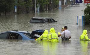 贵阳遭强降雨袭击:水牛上街游泳