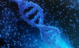 """""""基因魔剪引起突变""""论战持续升温,专家:实验设计不够科学"""