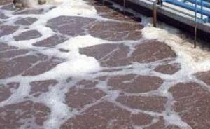 河北:5人向河套内倾倒工业废液时中毒死亡,被确定为刑案