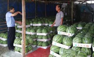 暖闻 瓜农1.5万斤西瓜滞留,民警在工作群吆喝两小时卖完