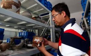 上博考古部主任陈杰:青龙镇等考古发现颠覆了上海古史的认知
