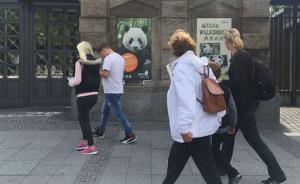 柏林动物园熊猫馆开馆在即,习近平将与默克尔出席开馆仪式