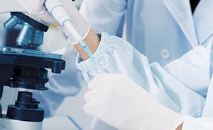 英科学家培育出功能性人工胆管小鼠实验成功,有望取代肝移植