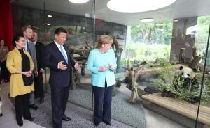 习近平同默克尔共同出席柏林动物园大熊猫馆开馆仪式